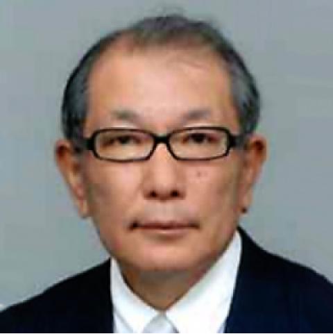 HIDEAKI DOMICHI