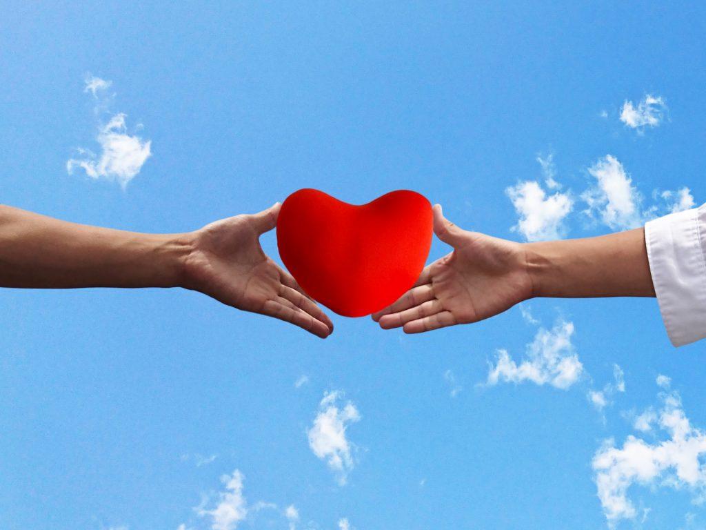 地震被害への寄付に参加したい!寄付金の贈り先はどうやって選べばいいの?